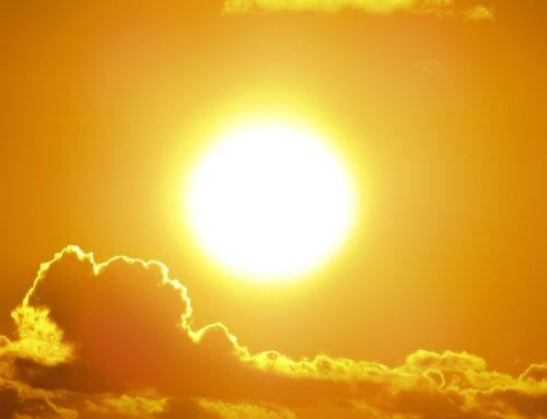 Consejos para protegernos de la ola de calor